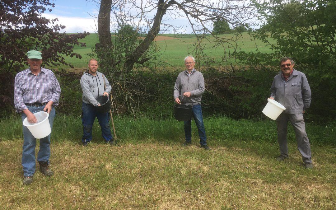 Bürgerliste/FWG-Initiative umgesetzt:  Eine Wildblumenwiese für Linsengericht